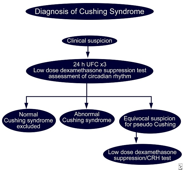 Diagnosis Of Cushing Syndrome